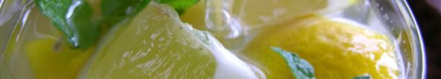 Ingrediente: 300 ml zeama de lamaie (cam 4 lamai zemoase) 1 l apa 10 linguri zahar 2 crengute de menta 1 lamaie felii  Cum procedezi: Stoarce lamaile, pune zeama...